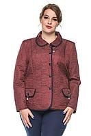 Демисезонная женская короткая стеганная приталенная куртка-пиджак батал (р.50-60). Арт-4008/1, фото 1