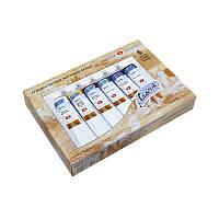 Краски масляные ʺЛадогаʺ 6 цветов Невская палитра  1241080 46 мл ЗХК (715)
