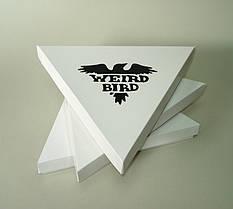 Печать индивидуальных лого на коробках, конвертах, крафт пакетах 18