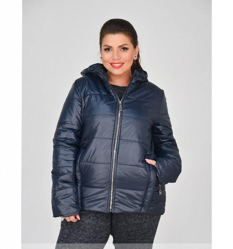 Куртка до бедра, с капюшоном №17-154-синий