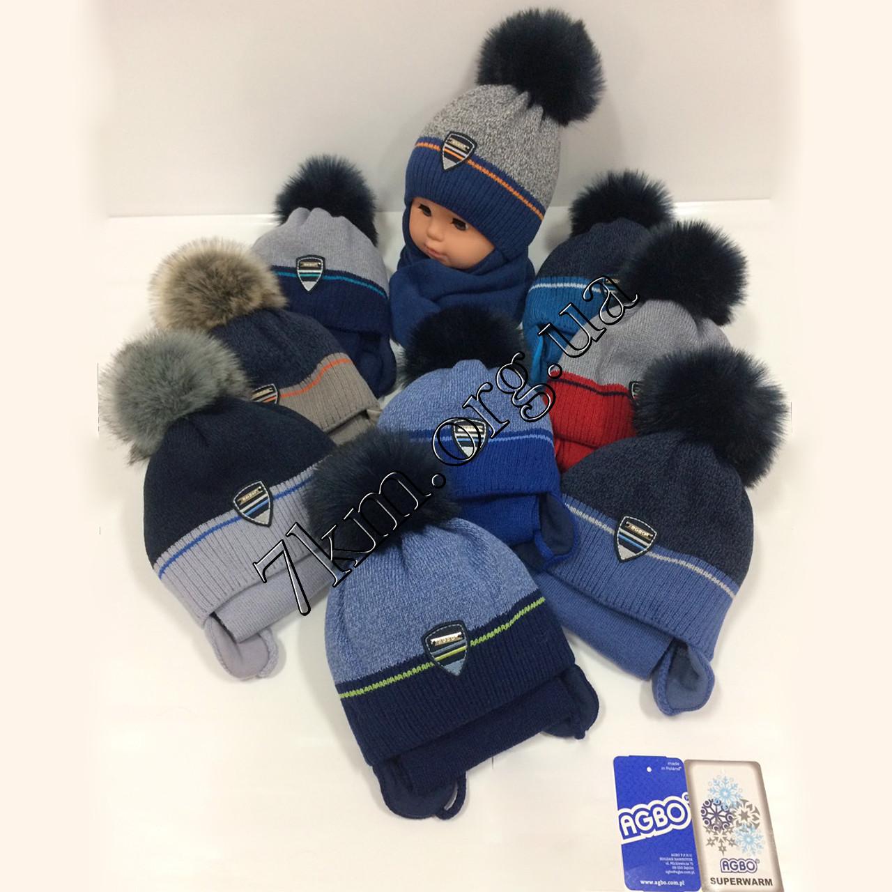"""Комплект детский шапка +шарф +хлопок изософт для мальчиков """"Agbo"""" 42-44 р.р. Польша Оптом 1678IG"""