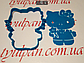 Вырубка с трафаретом Китти Форма для пряника 10 см можно др.размер и  форму, фото 5