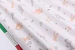 """Отрез сатина """"Зайцы и мишки"""" серо-оранжевые на белом № 2242с, размер 50*160, фото 4"""
