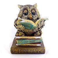 Сова копилка на книжке цветная гипс КГ017 цв