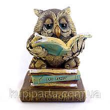 Сова копилка на книжке цветная гипс Гранд Презент КГ017 цв