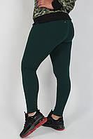 Лосины женские БОЛЬШИЕ размеры №0567 зелёный. Оптом