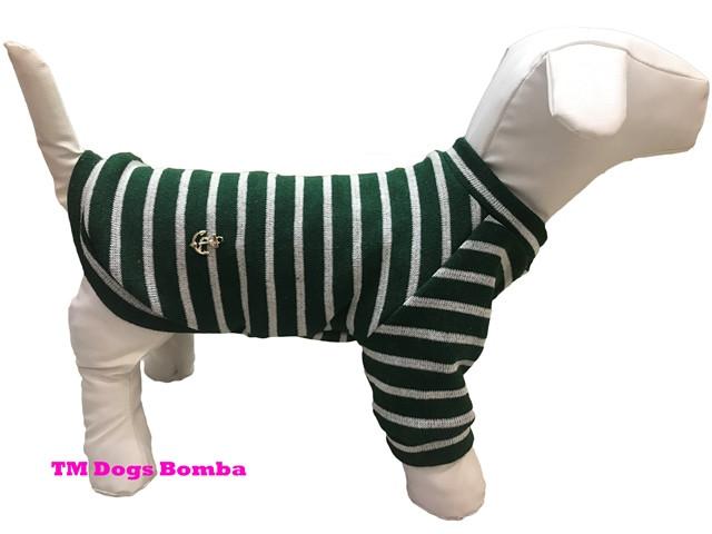 Свитер из ангоры для собак зеленый с полосами