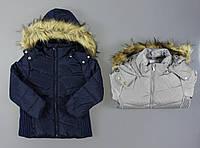 Курточка на меху для девочек Glo-Story оптом, 92/98-128 рр., фото 1