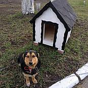 """Деревянная будка """"Белфорд"""" для собак"""