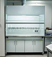 Шкаф вытяжной лабораторный ШВЛ-01 (специальный), фото 2