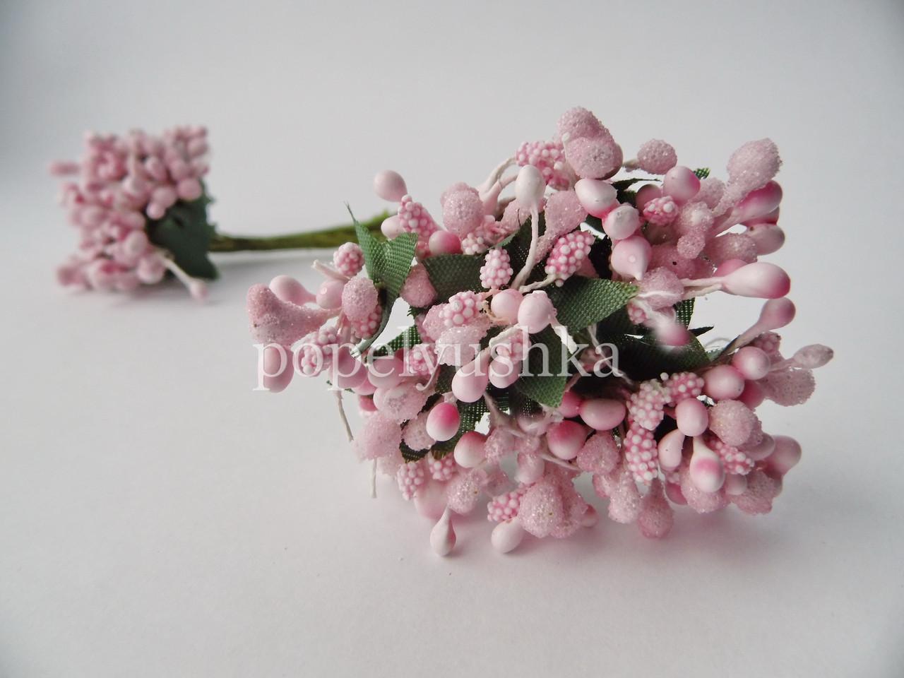 Дрібноцвіт рожевий