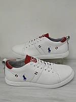 Кеды кожаные белые мужские Polo Ralph Lauren!!! Акция!! - 40%, фото 1
