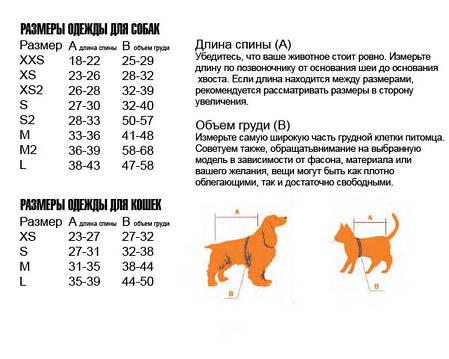 """Свитер Pet Fashion  """"Брюс"""" (серый), фото 2"""