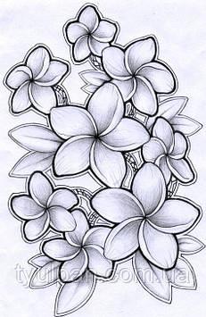 Шаблоны  для  айсинга и шоколада эскизы цветы