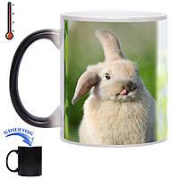 Чашка хамелеон Кролик 330 мл