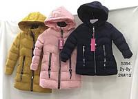 Куртка утепленная для девочек Nature , 2-8 лет. Артикул: RYG5354 {есть:2 года,4 года}