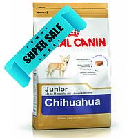 Сухой корм для собак Royal Canin Chihuahua Junior 0,5 кг