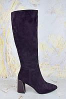 Женские сапоги на каблуке Lady Marcia фиолетовые