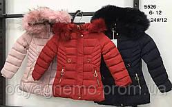 Курточка утеплена для дівчаток Nature оптом, 6-12 років. Артикул: RSG5526