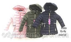 Куртка утеплена для дівчаток Nature оптом, 2-8 років. Артикул: RYG5353