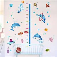 Детский ростомер дельфины  (165х125см)