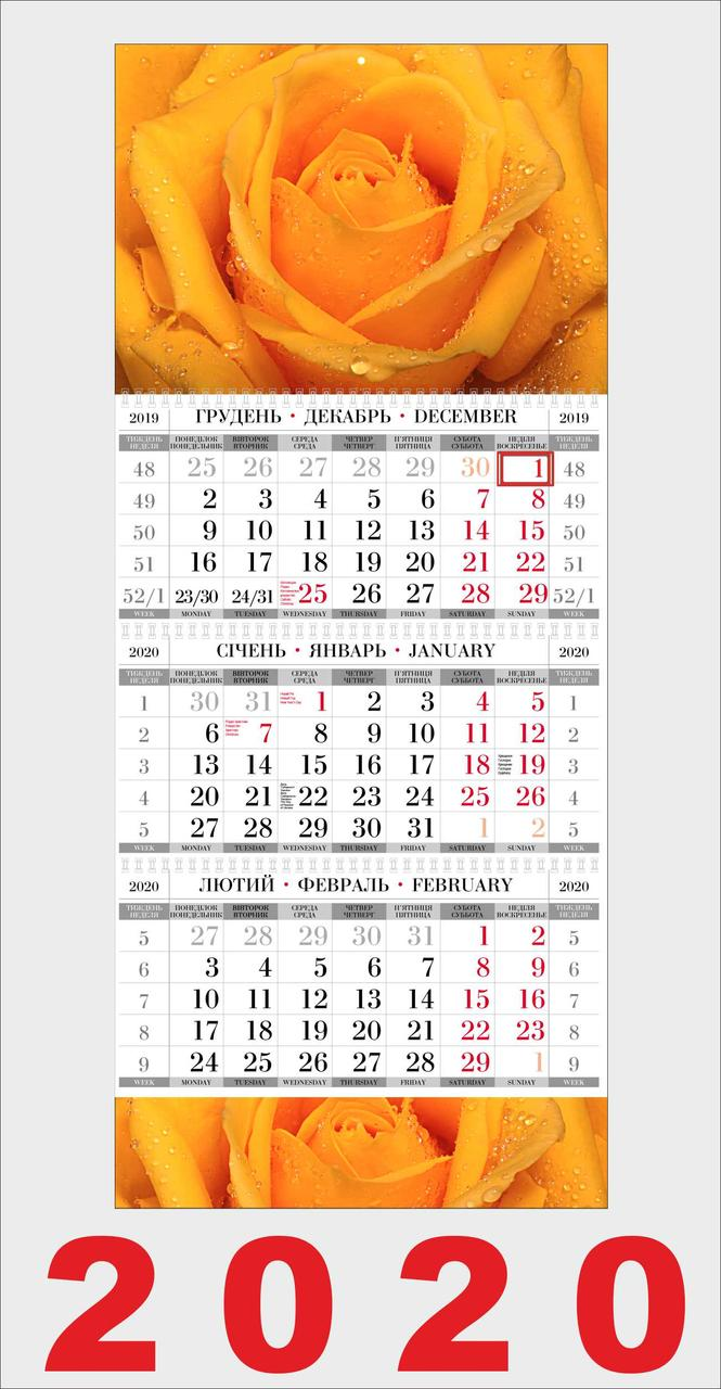 Квартальный календарь, Роза желтая