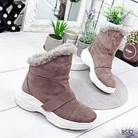 Ботинки женские Sirius пудра беж , женская обувь
