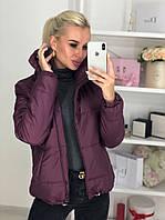 Куртка женская / плащевка, синтепон 150 / Украина 44-0174, фото 1