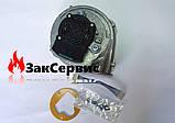 Вентилятор на конденсационный газовый котел Ariston  GENUS PREMIUM 60000622, фото 6