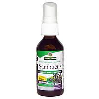 Nature's Answer, Sambucus,спрей-экстракт черной бузины, безалкогольный 2 жидких унции (60 мл)