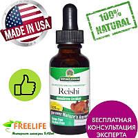 Nature's Answer, Рейши, без спирта, 1000 мг, 1 жидкая унция (30 мл)
