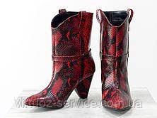 Ботинки женские Gino Figini Б-1902-11из натуральной кожи 38 Красный, фото 3