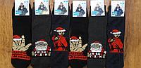 """Чоловічі махрові шкарпетки""""BRAVO"""" Туреччина 41-44, фото 1"""