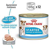 Консервы Royal Canin Starter Mousse для сук и щенков до 2 мес.