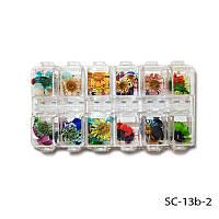 Сухоцветы для дизайна ногтей ( набор из 12 шт )