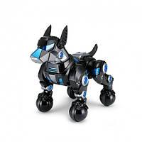 Интерактивная игрушка Робот собака Rastar DOGO Умная собака 77900