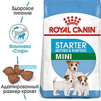 Сухой корм Royal Canin Mini Starter для щенков до 2 месяцев и кормящих сук