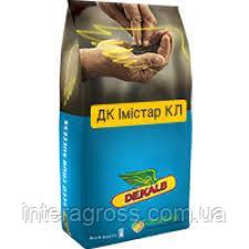 Купить Семена рапса ДК Імістар КЛ