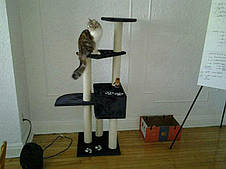 Игровой комплекс для котов Alicante с домиком для кошки и когтеточкой, фото 3