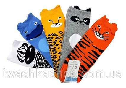 Комплект ярких, разноцветных носков с животными на мальчиков 6 - 12 месяцев, р. 0 - 18,5, Primark