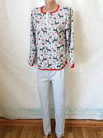 Пижамы женские теплые на байке р-р 46,48,50,52,54,58 хлопок Украина. От 6шт по 149грн
