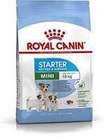 Корм Royal Canin MINI STARTER 8,5 кг -корм для беременных и кормящих сук и щенков мини-пород
