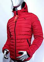 Мужская красная демисезонная куртка  Puma