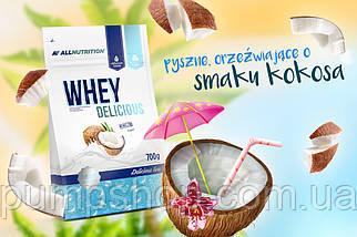 Сывороточный кремовый протеин AllNutrition Whey Delicious 700 г, фото 3