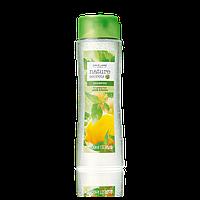 Шампунь для жирных волос «Крапива и лимон» большой объем, 400мл