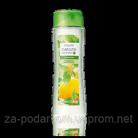 Шампунь для жирного волосся «Кропива і лимон» великий обсяг, 400мл