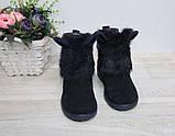 Ботинки зимние на девочку синие Ушки Ш-403 нат.замша/мех, р 32,33,36 р. Мальвы., фото 4