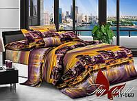 ✅  Двуспальный комплект постельного белья (Поликоттон) TAG XHY669