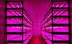 Светодиодный фитосветильник Т8-2835-0.6FS 9W IP20 линейный  (fito spectrum led) Код.58831, фото 7