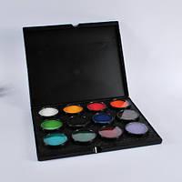 MEHRON Кейс-палитра и 12 шт аквагрима Paradise Makeup AQ по 40г (Палитра А)